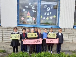 Школы Красноармейского района присоединились к акции Окна Победы»